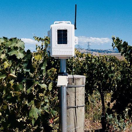 无线叶面和土壤温湿度台站